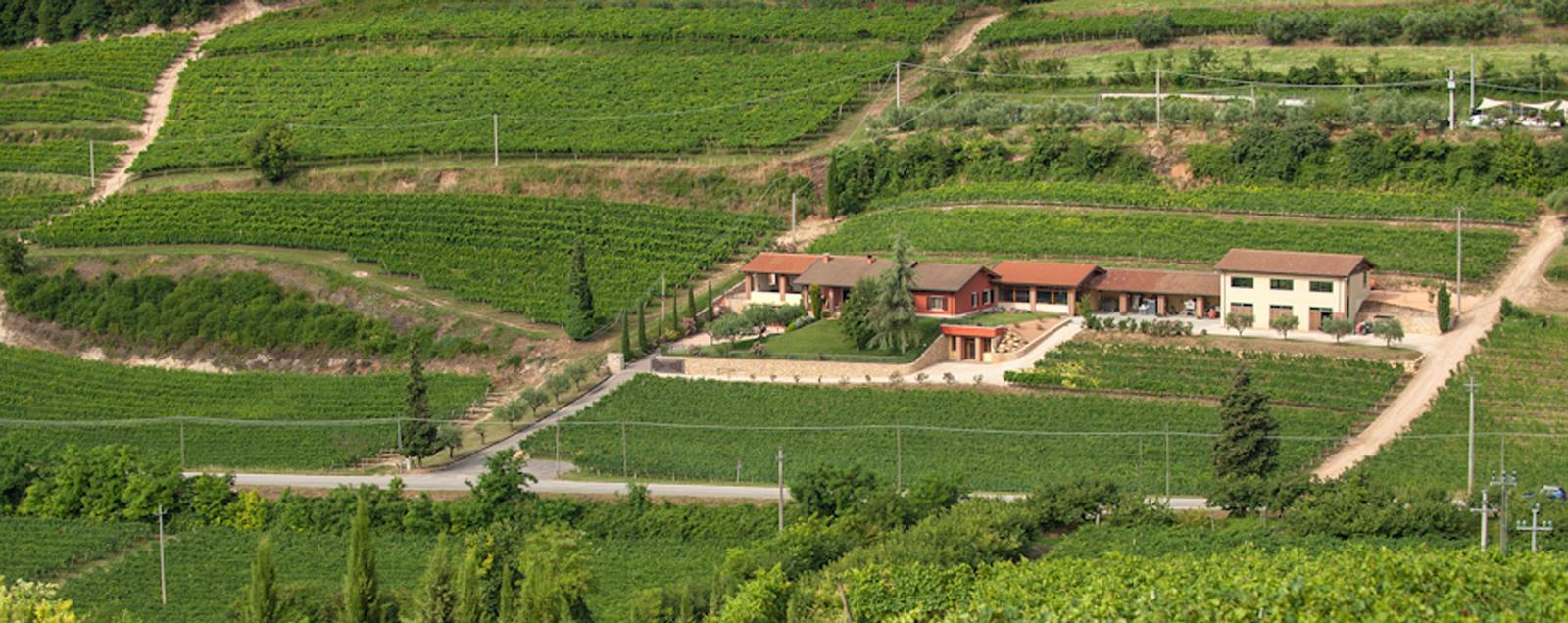 Corte Cavedini in Marcellise